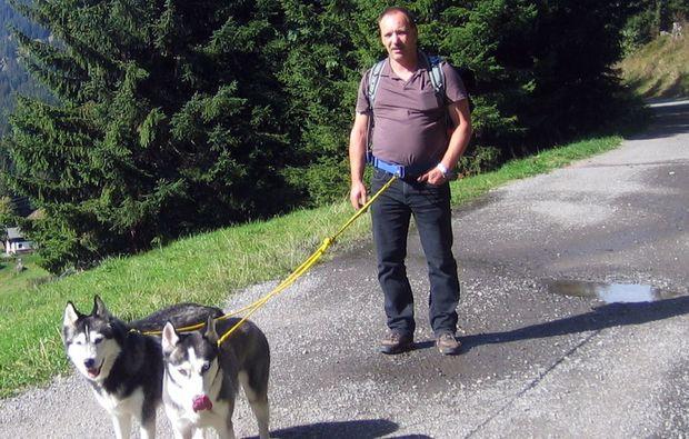 husky-trekking-moedingen-natur