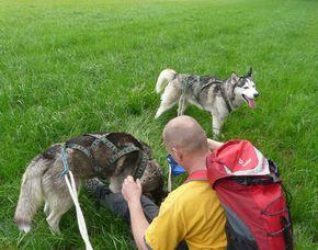 Husky-Trekking  Mödingen Ca. 6 Stunden