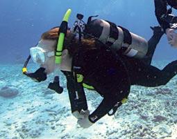 Tauchkurse Winkelhaid