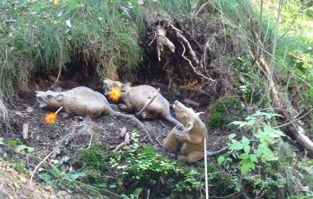 bogenschiessen-hellenthal-nature