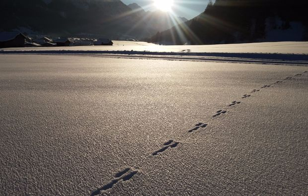 schneeschuh-wanderung-haeselgehr-winter