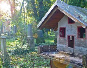 Stadt-Kult(o)ur (Alter-Südfriedhof-Safari) Alter-Südfriedhof-Safari