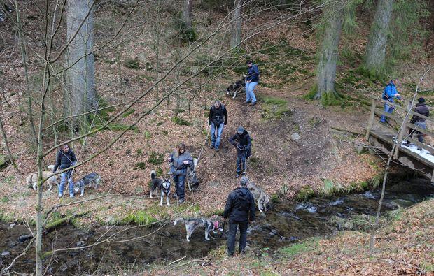 husky-trekking-schmallenberg-freunde