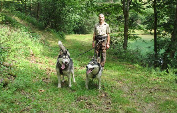 husky-trekking-schmallenberg-outdoor