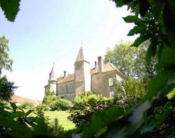 Schlosshotel in Saint Forgeot Chateu de Millery