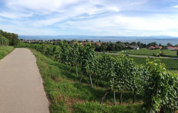 segway-panorama-tour-hagnau-weg