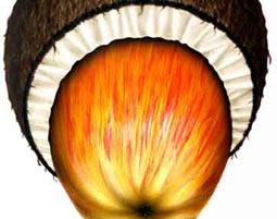 airbrush-kokosnuss