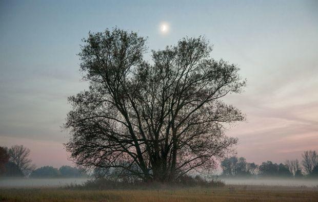fotokurs-letschin-fantasy
