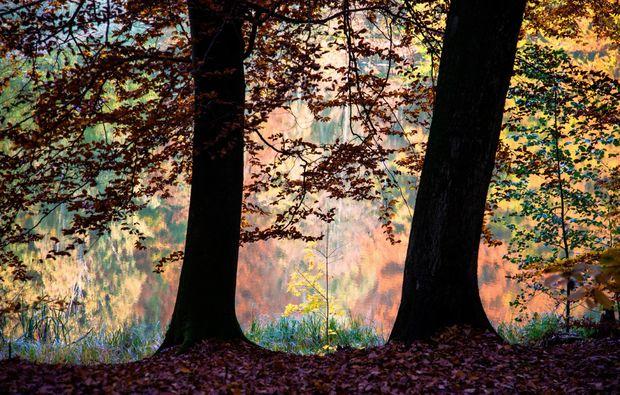 fotokurs-letschin-farben