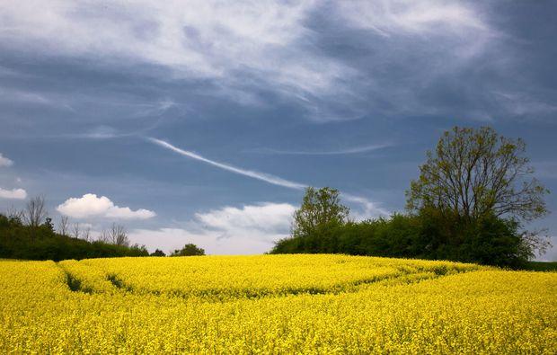 fotokurs-letschin-landschaft