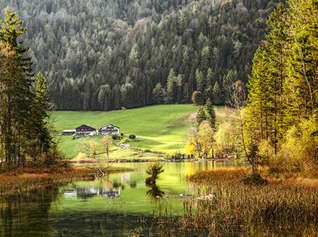Naturparadies Bayerischer Wald