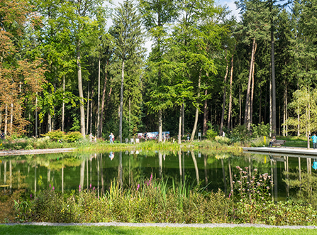 Teich Bad Lippspringe