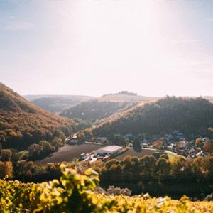 Weinreisen Niederhausen - Nahe