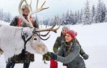 Erlebnisreise Lappland