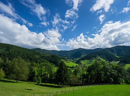 Idyllische Landschaft im Schwarzwald bei Seewald Besenfeld