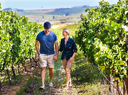 Pärchen Spaziergang zwischen Weinreben