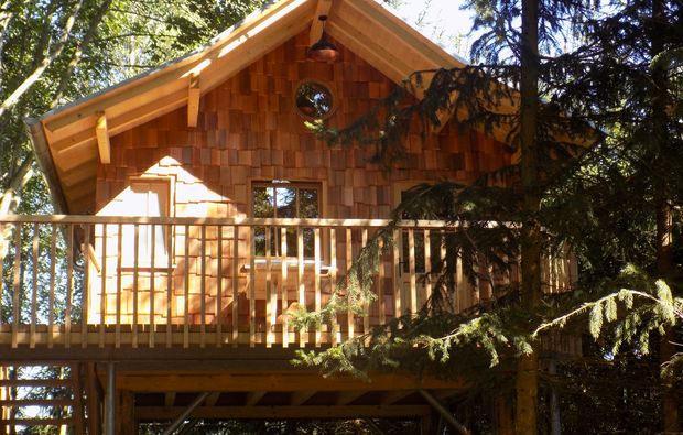 Baumhaus Ubernachtung Urlaub Im Baumhaus Mydays Mydays