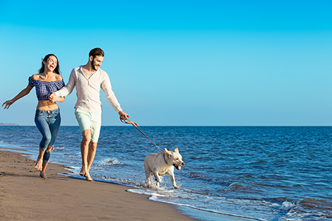 Paar mit Hund Strand Meer